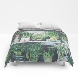 green bamboo plant in the vase pattern background Comforters