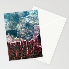 Barrel Sponge Stationery Cards
