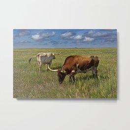 Longhorns on the Prairie Metal Print