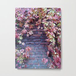 Wall with leaves Metal Print