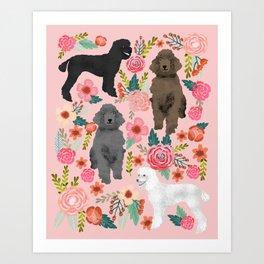 Poodle mixed coat colors brown poodle black poodle white poodle pet portrait dog art animal Art Print