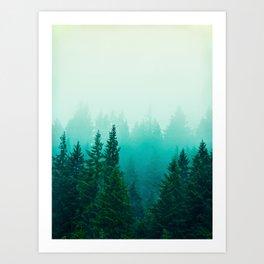 Fog Foggy Samish Forest Woods Mountain Northwest Washington Landscape Art Print