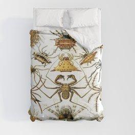 Ernst-haeckel-Arachnida Comforters