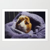 guinea pig Art Prints featuring My brothers guinea pig by Jamie de Leeuw