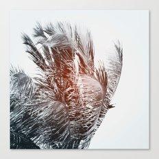 Flare #3 Canvas Print