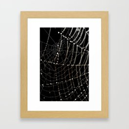Spiders web and spiders web. Framed Art Print