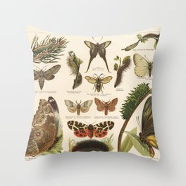 Antique Schmetterlinge I (Butterfly 1) Lithograph Throw Pillow