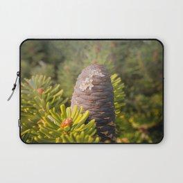 Coniferous tree branch Laptop Sleeve