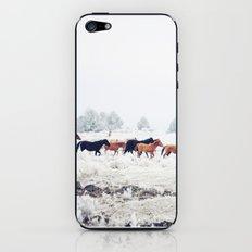 Winter Horse Herd iPhone & iPod Skin