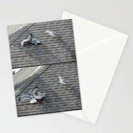Brawling Gulls (1) Stationery Cards