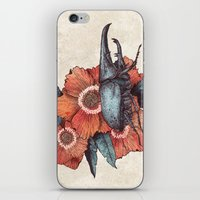 hercules iPhone & iPod Skins featuring Hercules Beetle by Angela Rizza