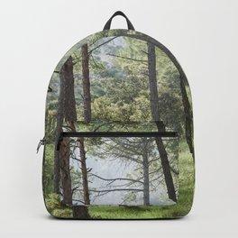 Spring forest. Foggy sunrise Backpack