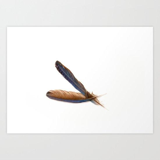 Jay Feathers Art Print