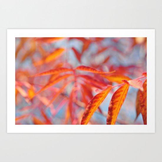 Autumnal Bliss... Art Print