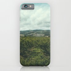 Vineyards, South of France Slim Case iPhone 6s