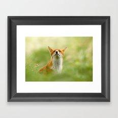 The Mindful Fox Framed Art Print