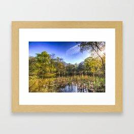 The Bulrush Pond Framed Art Print