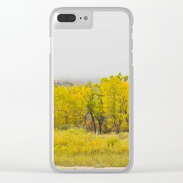 Theodore Roosevelt National Park North Unit, North Dakota 10 Clear iPhone Case