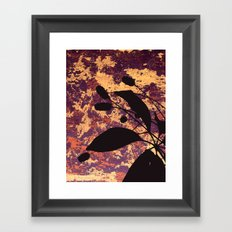 Coots Series 4 of 4 Framed Art Print