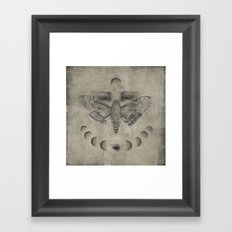 Circaea Framed Art Print