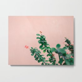 Floral photography print   Green on coral   Botanical photo art Metal Print