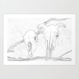 Sheeps Skull Art Print