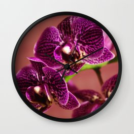 Graceful Orchids !! Wall Clock