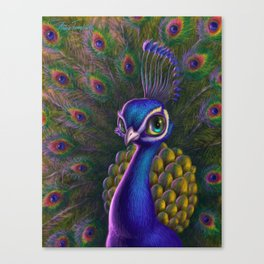 Peacocking Canvas Print