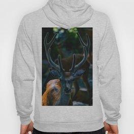 The Buck (Color) Hoody
