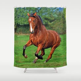 Charging horse Shower Curtain
