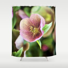 Hellebore Fractal Shower Curtain