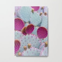 Santa Rita Prickly Pear II Metal Print