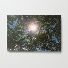 Sunny Skies Metal Print