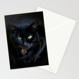 When A Black Cat Hearts Your Path Stationery Cards