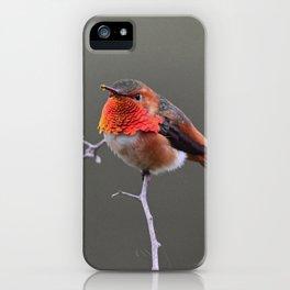 Attitude iPhone Case