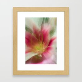 Abstract Pink, Yellow, White Lily-Fleur Blur Series Framed Art Print