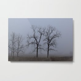 And The Fog Rolls In Metal Print