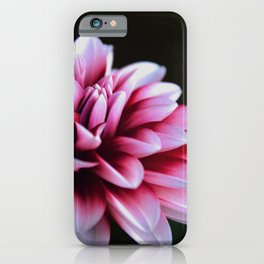 Pretty in Pink #1 iPhone Case