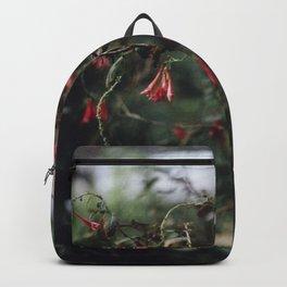 Greenhouse II Backpack