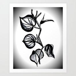 Kava Art Print