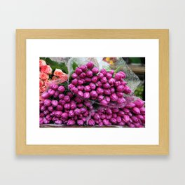 Rain Soaked Tulips Framed Art Print