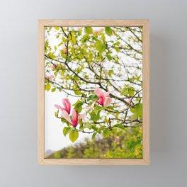 Jardin du Palais Royal II Framed Mini Art Print