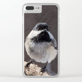 Chickadee with Texture Clear iPhone Case