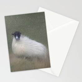 Moorland sheep  in the snow Stationery Cards