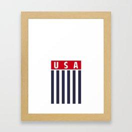 USA World Cup Framed Art Print