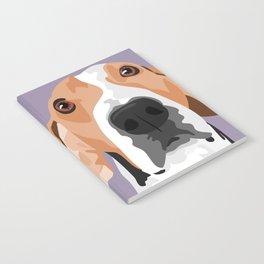 Mabel Notebook