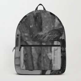 The Girl and the Big Bad Wolf black and white photograph Backpack