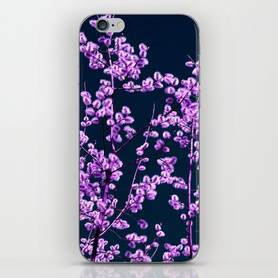willow catkin II iPhone & iPod Skin