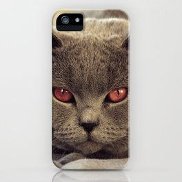 Superstar Diesel the Cat ! iPhone Case