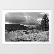 Storm Rising in the Cuyamacas Art Print